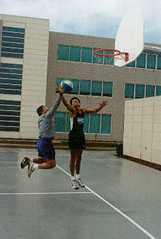 Shaklee Basketball